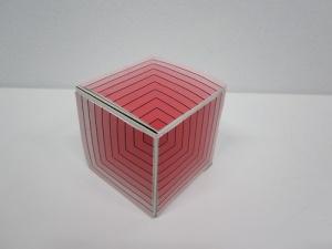 cube net - square centremetres